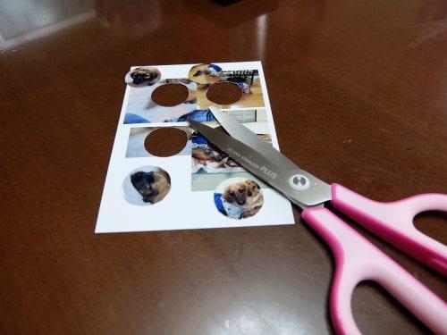 写真をハサミで切り抜きます
